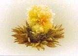 Белый чай Серебряная хризантема (минимальная отгрузка 0,5 кг)