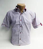 Рубашки мужские  коттон (M-3XL норма) Китай, от 7 шт.
