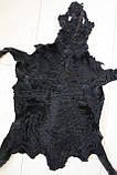 Каракульча черная. Отправка по Украине., фото 2