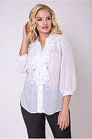 Блуза Фаина , фото 1