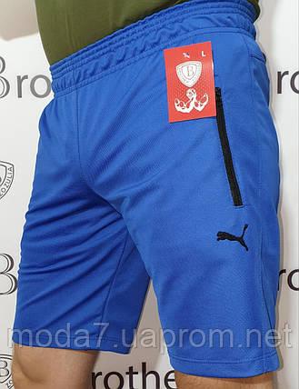 Шорты мужские синие лакоста Puma реплика, фото 2
