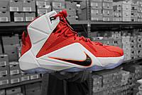 """Баскетбольные кроссовки Nike Lebron 12 """"Heart of a Lion"""", фото 1"""