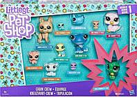 Игровой набор Hasbro Littlest Pet Shop Коллекция петов (B9343_C1673)