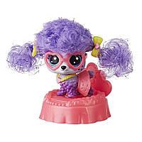 Игровой набор Hasbro Littlest Pet Shop премиум Пудель Бебе (E2161_E2426), фото 1