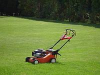Посадка и уход за газоном стрижка скарификация удобрение и покос травы