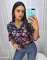 182f5771d76 Женская рубашка с бабочкой в Украине. Сравнить цены