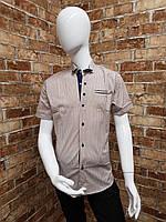 Рубашка подростковая с коротким рукавом для мальчика от 12 до 16 лет кофейная с тёмно синим, фото 1