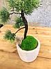Дерево декоративное ручной работы, бонсай, фото 2