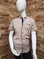 Рубашка подростковая с коротким рукавом для мальчика от 12 до 16 лет кофейного цвета, фото 1