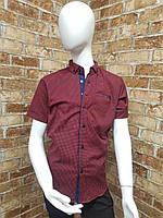 Рубашка подростковая с коротким рукавом для мальчика от 12 до 16 лет бордового цвета