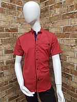 Рубашка подростквая с коротким рукавом для мальчика от 12 до 16 лет красного цвета, фото 1