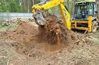 Удаление корней кустарников. Удаление кустов и деревьев оптом. Удаление кустов цена
