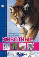 Талант Енциклопедії: Животные (Р), фото 1