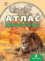Талант Енциклопедії: Атлас тварин (У), фото 1