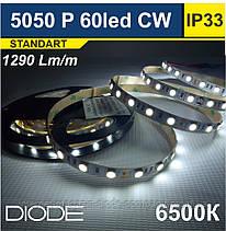 Світлодіодна стрічка SMD 5050/60 шт/6500 К