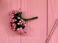 Тычинки розовые