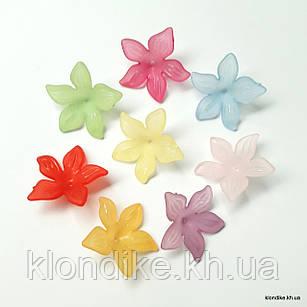 Серединки Цветочки,  d - 2.8 см, Цвет: Микс (10 шт.)