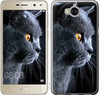 Чехол EndorPhone для Huawei Y5 2017 Красивый кот (3038m-992)