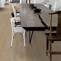 Wicanders D887001 Ivory Chalk пробкова підлога Oak Wood Essence