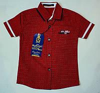 Рубашка-шведка  для мальчика рост 92,104 см, фото 1