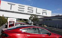 В Украине построят завод Tesla!