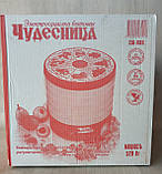 Сушка электрическая для фруктов овощей и грибов РОТОР / ДИВА  сушилка 25 литров, фото 4