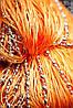 Шторы нити Диско № 3 (Оранжевый)
