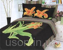 Комплект постельного белья  le vele сатин размер семейный Aliza black