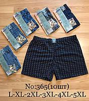 Трусы мужские хлопковые L-5XL (от 10 шт)