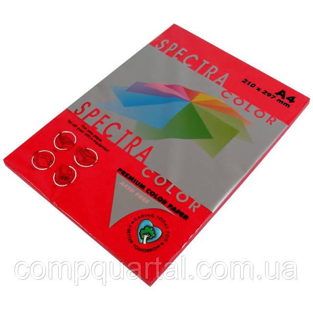 Папір кольоровий 80г/м, А4 100арк. SPECTRA COLOR IT 250 Red (Інтенсивний червоний)