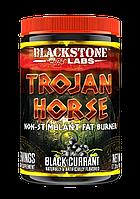 Жиросжигатель Blackstone Labs Trojan Horse 60 порц. (492 г)