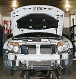 Декоративно-защитная сетка радиатора Renault Duster фальшрадиаторная решетка, бампер, фото 2