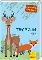"Книга ""Малятко, подивись! Тварини лісу"" (укр) А1040007У"