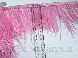 Пір'я страуса на тасьмі рожеве 10-12 см.  Ціна за 1 метр