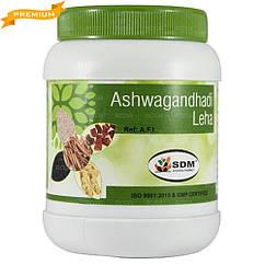 Ашвагандха Лехьям (Ashwagandha Leha, SDM), 500 грам - сила та витривалість організму, стрес, виснаження