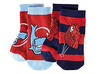Носки для мальчика Lupilu Стикиз, Германия, (2 пары в упаковке ), размер 27-30 (4-5 лет)