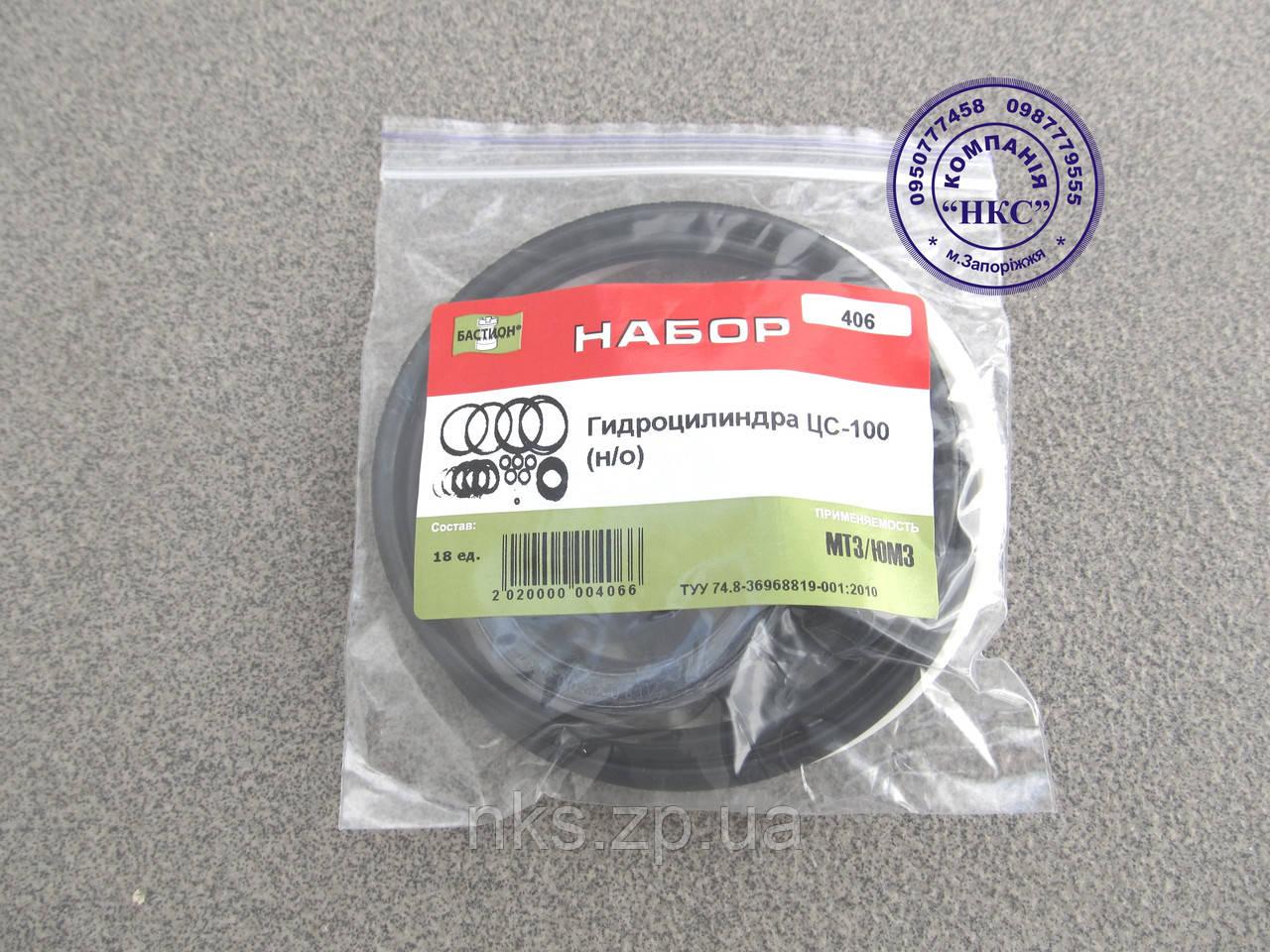 Ремкомплект гидроцилиндра ЦС-100