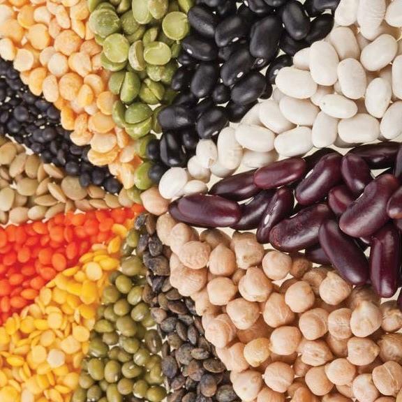 Семена гороха, фасоли, чечевицы. Фасовка 100г