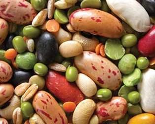 Семена гороха, фасоли, чечевицы. Крупная фасовка.