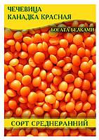 Семена Чечевицы Канадка красная, 1 кг