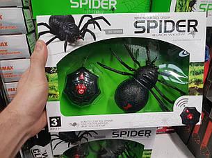 """Паук на радиоуправлении """"Черная вдова"""" Spider z2112, фото 2"""