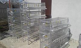 Клетки для перепела (цена за этаж) 40 голов птицы