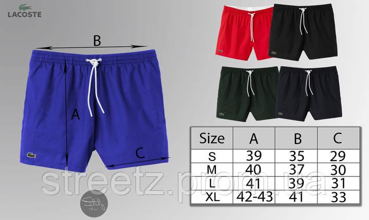 Пляжные шорты Lacoste, фото 2