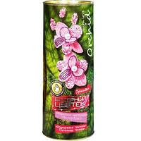 Набор для творчества Бисерный цветок орхидея бисероплетение