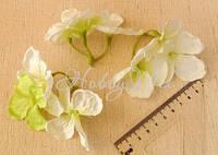 Веточки-насадки  Гортензия бело-зеленая 5 шт., фото 1