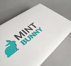 Печать индивидуальных лого на коробках, конвертах, крафт пакетах 13