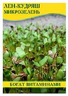 Семена Лен-кудряш, микрозелень, 100гр.