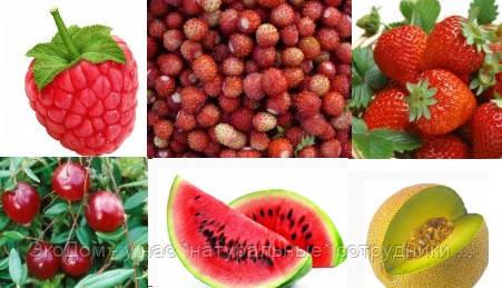 Ароматизатор пищевой - набор пробников: ягоды