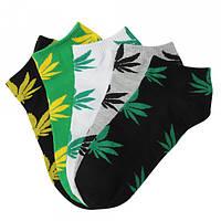 Шкарпетки чоловічі деми  Чайка, упаковка 12 шт