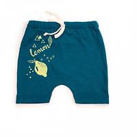Шорты для малышей Верес Lemon Doggy кулир размер аквамарин